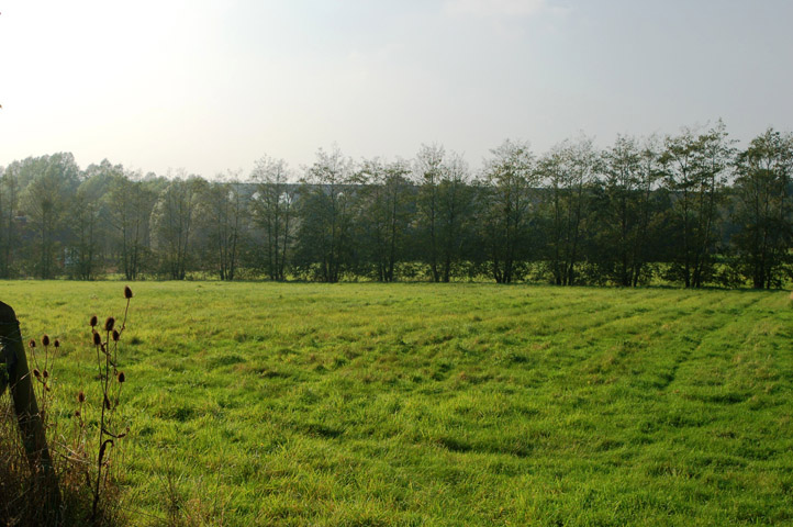 parish field
